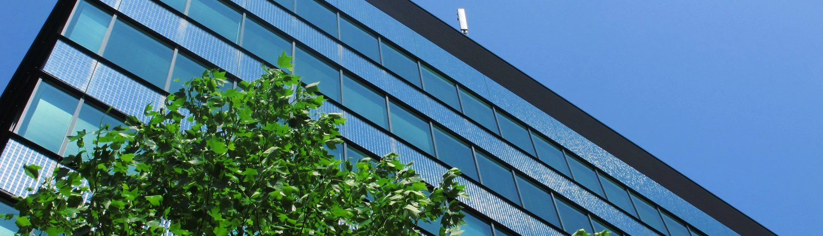 不動産・賃貸借・建築に関する弁護活動